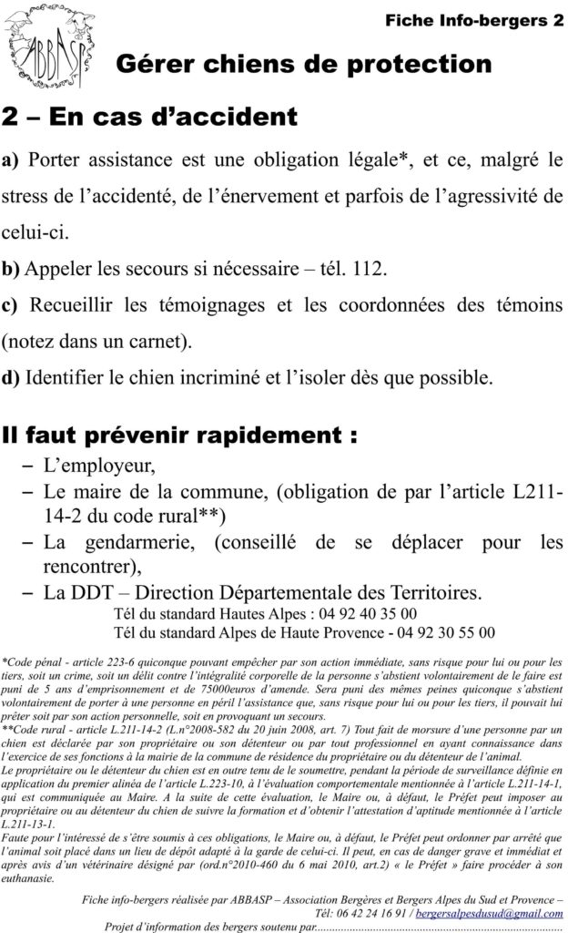Fiche chiens de protection 2 - accident